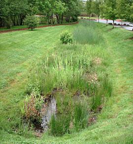 Flood risk management through stormwater retention ponds for Design of retention pond