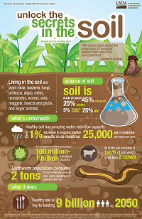 soil health agriculture