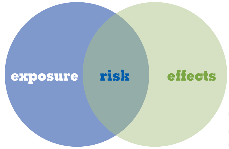 Environmental Risk Assessments