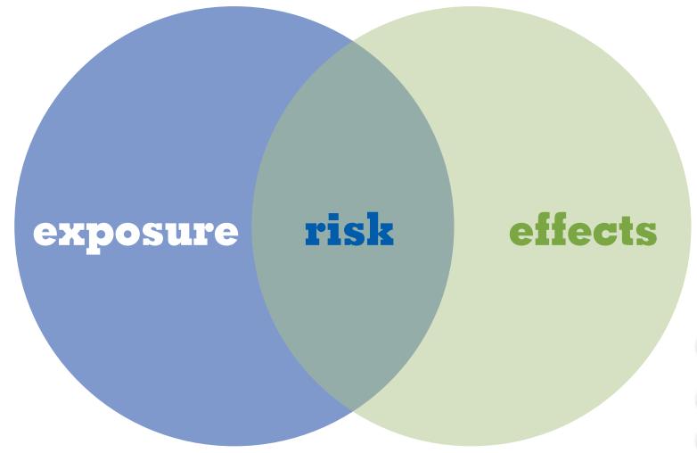 Environmental Risk Assessments